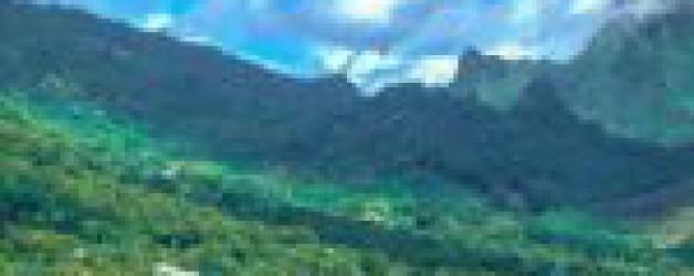 Taux d'incidence record, weekends confinés, hôpitaux saturés… Le point sur l'épidémie de la Covid-19 en Polynésie française